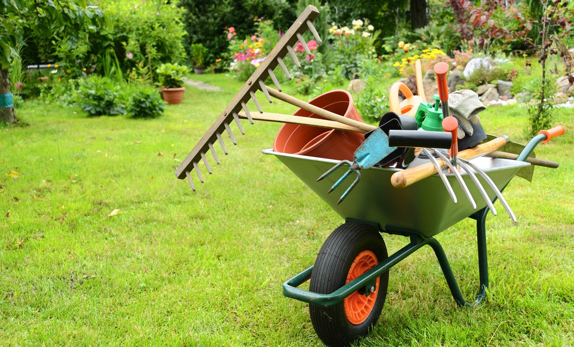 Sklepy online z wyposażeniem ogrodowym – jak przyciągnąć Klientów?