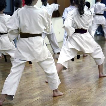 Otwieramy szkołę sztuk walki – czy musimy posiadać jakikolwiek stopień instruktorski?